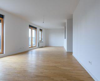 Novogradnja Zemun, Prodaja Stanova Zemun - ID 42237